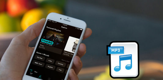 Ways the YouTube to MP3 Convertor